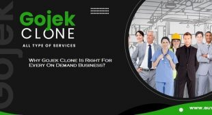 Why Gojek Clone Is Right For Every On Demand Business?