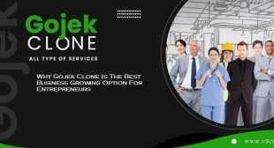 Why Gojek Clone Is The Best Business Growing Option For Entrepreneurs?
