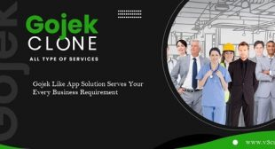 Gojek Like App Solution Serves Your Every Business Requirement