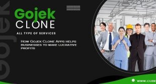How Gojek Clone Apps helps businesses to make lucrative profits