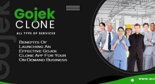 Benefits Of Launching An Effective Gojek Clone App For Your On-Demand Business