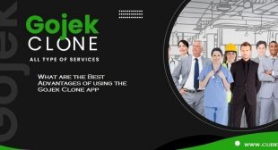 What are the Best Advantages of using the Gojek Clone app