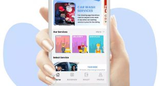 The Biggest Giant of the on Demand Service Market – Gojek Clone App