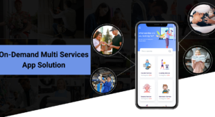 A Brief Introduction To The Development Of World-class Multi-service App