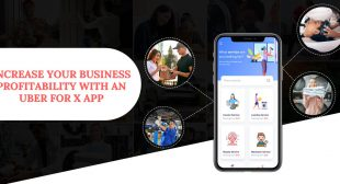Increase your business profitability with an Uber for X app