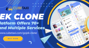 Tips To Flawlessly Handle Your Multiservices Business Using Gojek Clone