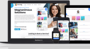 Gojek Clone App – Best Solution for Online Business in 2021