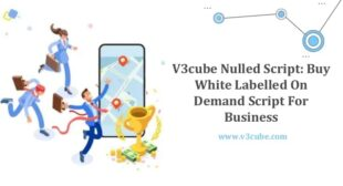 V3cube Nulled Script: Buy White Labelled On-Demand Script For Business
